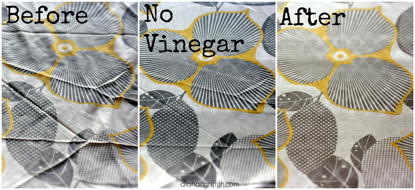 before-after-iron-vinegar-comparrison